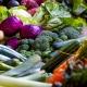 Verschillende groenten | Groen Rechts